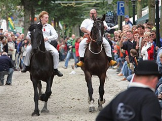 St. Jansdraverij Trotting competition